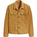Levis wood thrush cord trucker jacket
